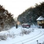 Schienenbus hinterm Nussberg