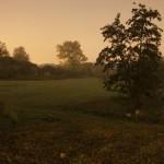 Riddagshausen bei Mondnacht